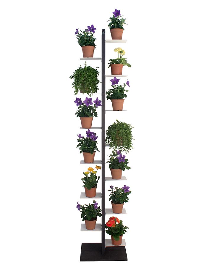 le zie di milano porte plantes zia flora h 204 cm noir h tre massif et acier. Black Bedroom Furniture Sets. Home Design Ideas